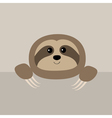 Sloth face and hands Cute cartoon character Wild vector image vector image