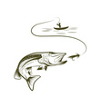 fisherman in a boat and pike vector image vector image