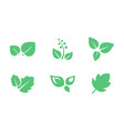 green leaves set leaf of trees and plants vector image vector image