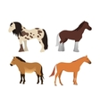 Horse isolated animal vector image vector image
