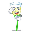 sailor white rose in the shape cartoon vector image vector image