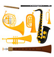 wind musical instruments tools acoustic musician vector image