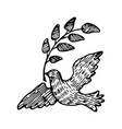 dove peace with a twig vector image vector image