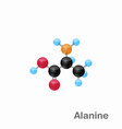 molecular omposition and structure of alanine ala vector image vector image
