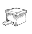 cat in box paw in hole sketch engraving vector image