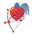 heart with wings holding bow and arrow vector image