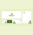 natural product logo design template bundle vector image vector image