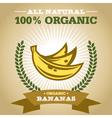 Organic Banana vector image vector image