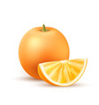realistic orange fruit slice 3d isolated vector image vector image