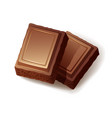 two pieces milk porous chocolate on white vector image vector image