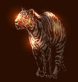 a tiger on dark background