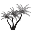 Palm silhouette EPS 10 vector image vector image