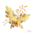 watercolor autumn bouquet of branches and vector image