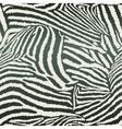 Animal Zebra Seamless Background vector image