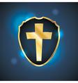 Golden Blue Cross Shield vector image