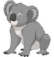 Adult funny koala vector image