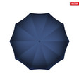 mary poppins umbrella vector image
