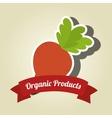 organic products farm fresh vector image vector image