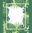 palm green leaves vector image