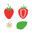 red berry strawberry and a half strawberry set vector image vector image