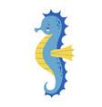 cute cartoon blue sea horse isolated seahorse on vector image vector image