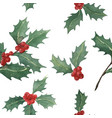 holly watercolor seamless pattern vector image vector image