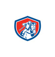 Horse Racing Jockey Shield Retro vector image vector image