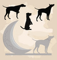 hound and the moon clipart set vector image
