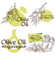 olive branches and bottles with oil contour vector image