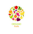 organic fruits banner with natural fresh vector image vector image