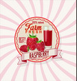 raspberry retro vintage background vector image vector image