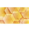 abstract background hexagons vector image