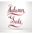 Autumn Sale Sign vector image