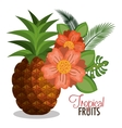 cartoon pineapple tropicals design vector image