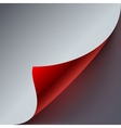 Curled grey and red paper page corner with vector image vector image