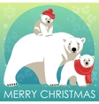 Greeting Card with Polar bear family vector image vector image