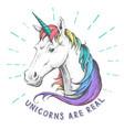 hand drawing hipster fantasy animal unicorn vector image