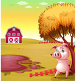 Pig Farm vector image