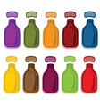 set of bottles with juice vector image