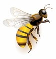 3d bee stock icon bee logo vector image vector image