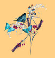 beautiful blue butterflies and flowers vector image vector image