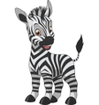 Cute funny zebra vector image vector image