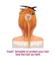 detailed step step for hair extension vector image