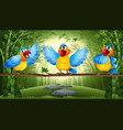 parrot in bamboo forest vector image vector image