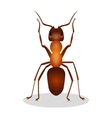 Realistic ant with two legs raised up hooked vector image vector image