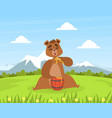 brown bear sitting on green lawn and eating honey vector image vector image