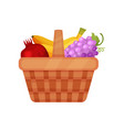 brown picnic basket with sweet and fresh fruits vector image
