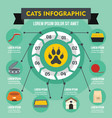 cats infographic concept flat style vector image vector image