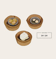 dim sum colorful of chinese vector image