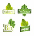 Eco Bio Natural Organic Icon Set vector image vector image